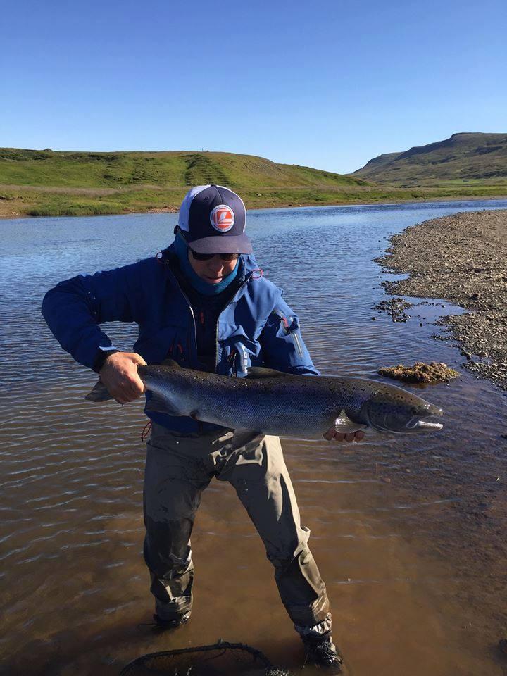 Atlantic salmon, Laxa I Dolum Iceland, Aardvark McLeod