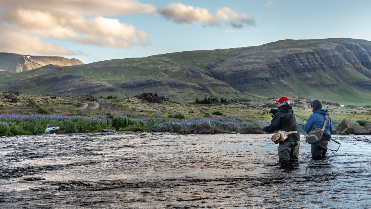 Atlantic salmon Iceland, Laxa I Kjos Iceland, Fly Fishing Iceland, Sea trout Iceland, Edward Smith Iceland, Iceland, Aardvark McLeod Iceland