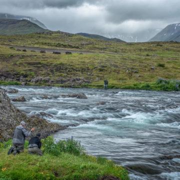 Atlantic salmon Iceland, Laxa I Kjos Iceland, Fly Fishing Iceland, Sea trout Iceland, Edward Smith Iceland, Iceland, Aardvark McLeod Iceland