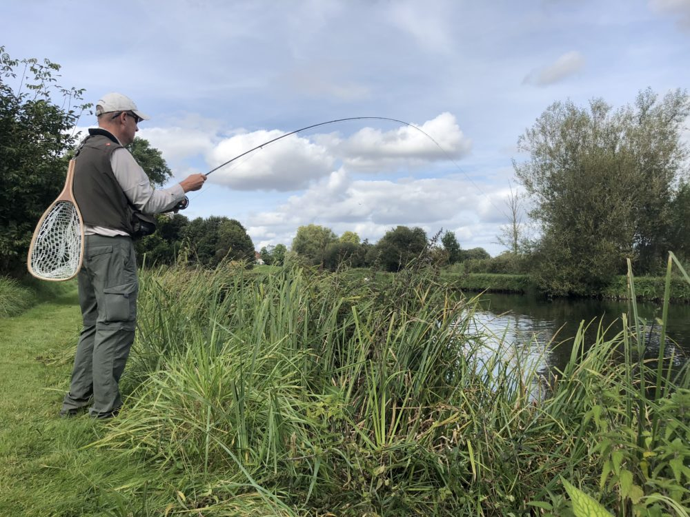 Brown trout, chalkstream fly fishing, river test, river anton, river avon,