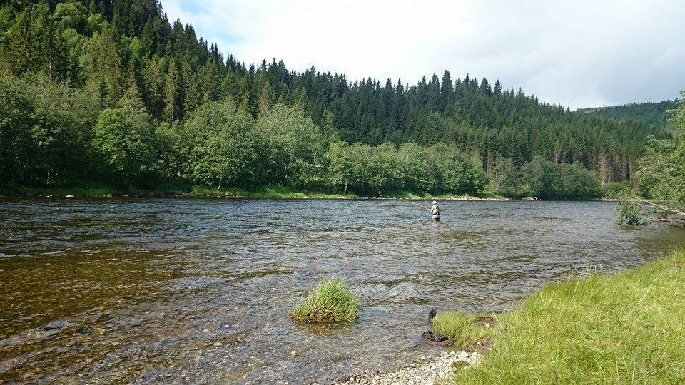 Aunan Lodge Norway, Norway, Salmon Fishing Norway, Orkla River Norway, Fly Fishing Norway, Aardvark McLeod Norway