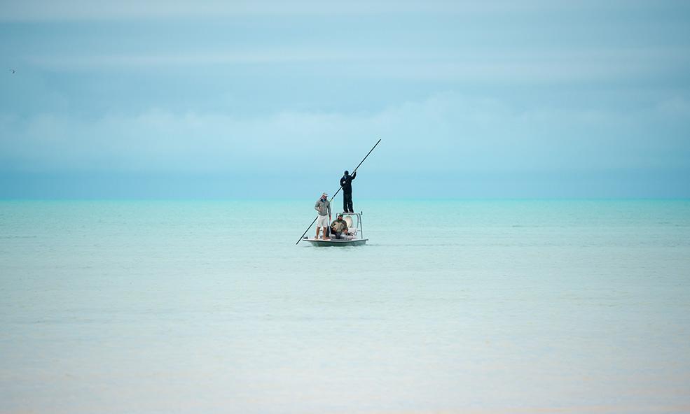 Eleven Experince, Mothership, Andros Island, Bahamas, Aardvark McLeod