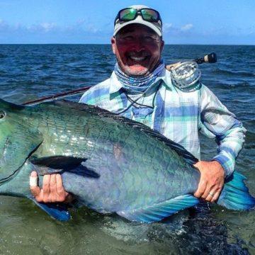 Aardvark McLeod Farquhar atoll Seychelles bumphead parrotfish
