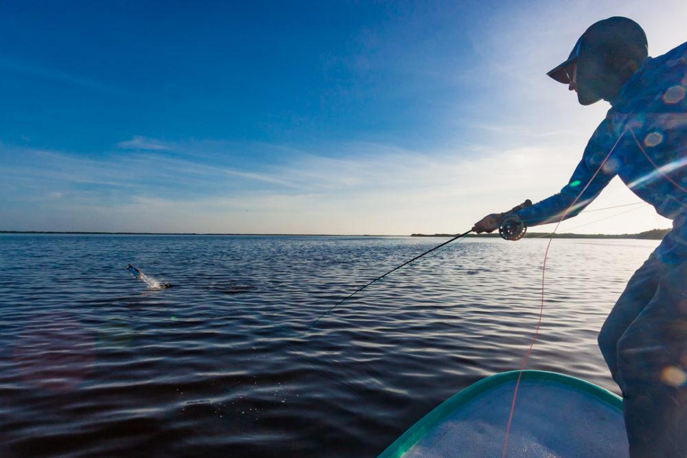 Tarpon Cay Lodge Mexico, San Felipe Mexico, Yucatan Peninsula Mexico, Tarpon fishing Mexico, Fishing Mexico, Alex Jardine Mexico, Aardvark McLeod Mexico