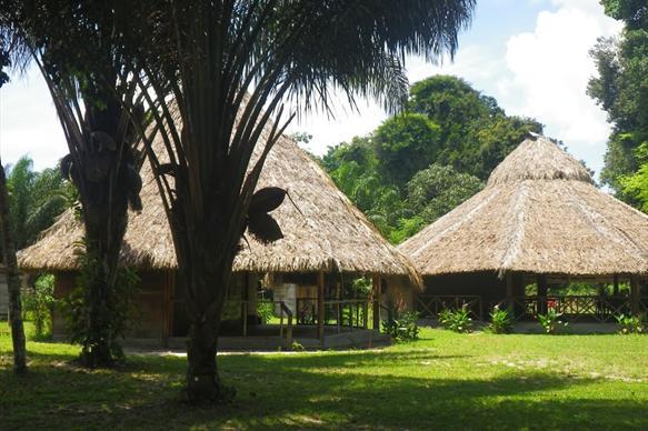 Rewa, Guyana, Arapaima, fishing, Aardvark McLeod