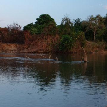 Tanzania, Tigerfish, Mynyera, Ruhudji, fly fishing for tigers, tigerfish on fly, fishing for tigerfish