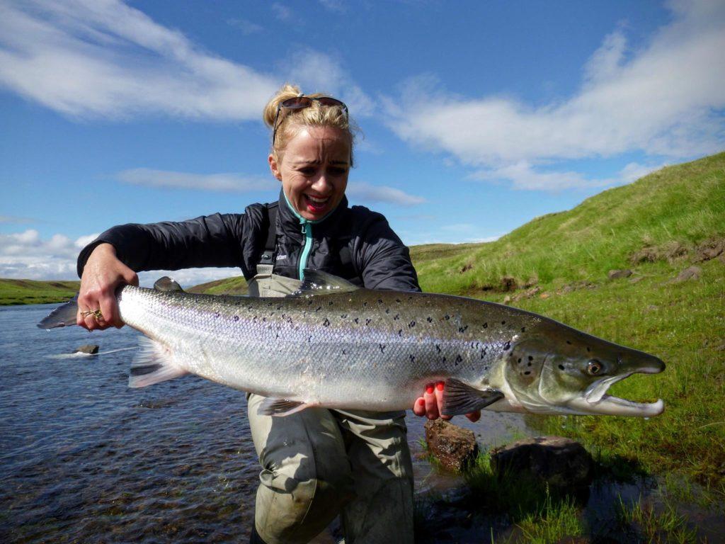 Iceland, Aardvark McLeod