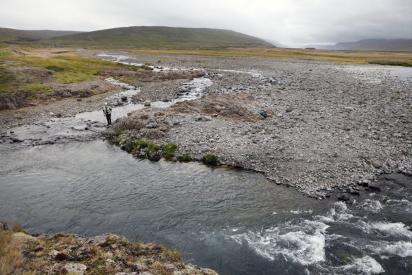 Haukadalsa, Iceland, Aardvark McLeod, salmon, trout, Iceland Fishing Guide, fishing in Iceland