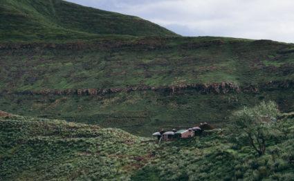 Makhangoa Community Camp, Lesotho, Aardvark McLeod, rainbow trout, brown trout, yellowfish,