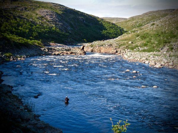Kharlovka, Eastern Litza, Rynda, Zolotaya, ASR, Atlantic Salmon Reserve, Aardvark McLeod, salmon fishing, fishing in Russia