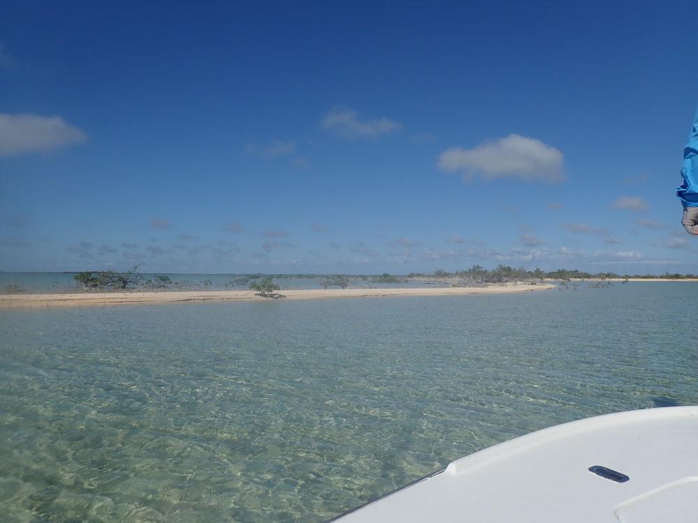 Andros South, Bahamas, fishing in Bahamas, bonefish, Bahamas bonefish, Andros South Lodge, fishing South Andros