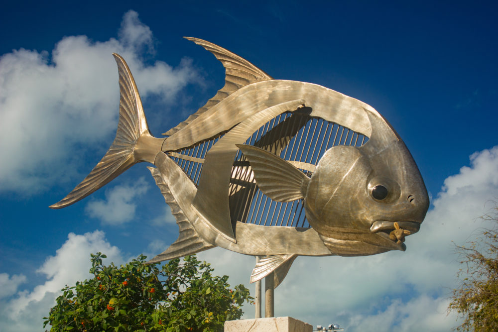 Punta Allen Fishing Club, Ascension Bay, Yucatan Peninsula, Fishing Mexico, Alex Jardine, Aardvark McLeod