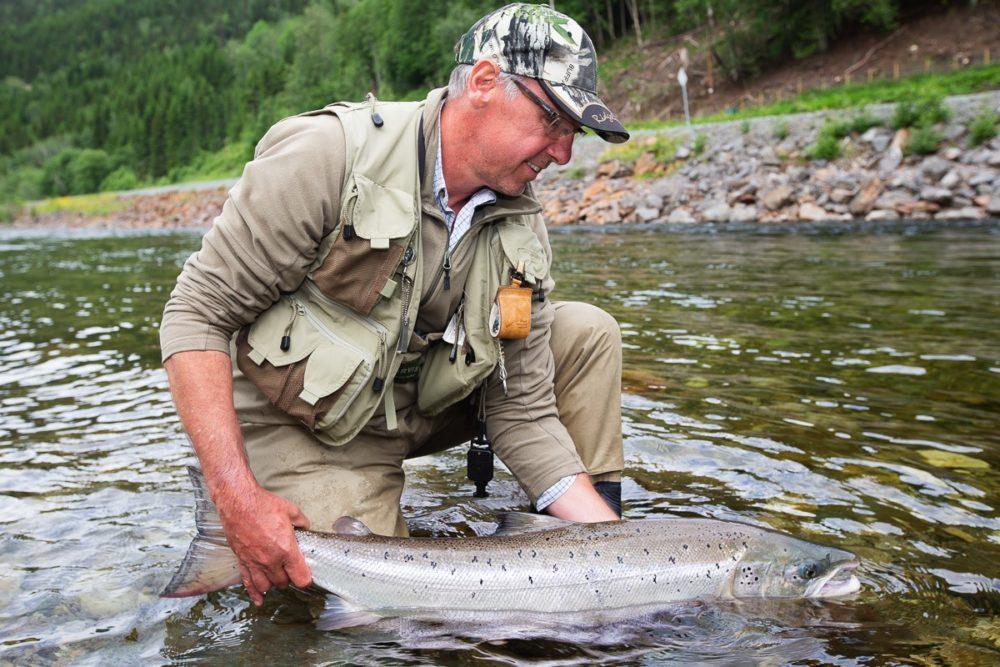 Gaula River Norway, Norwegian Fly Fishers Club Norway, NFC Norway, Atlantic salmon Norway, Salmon Fly Fishing Norway