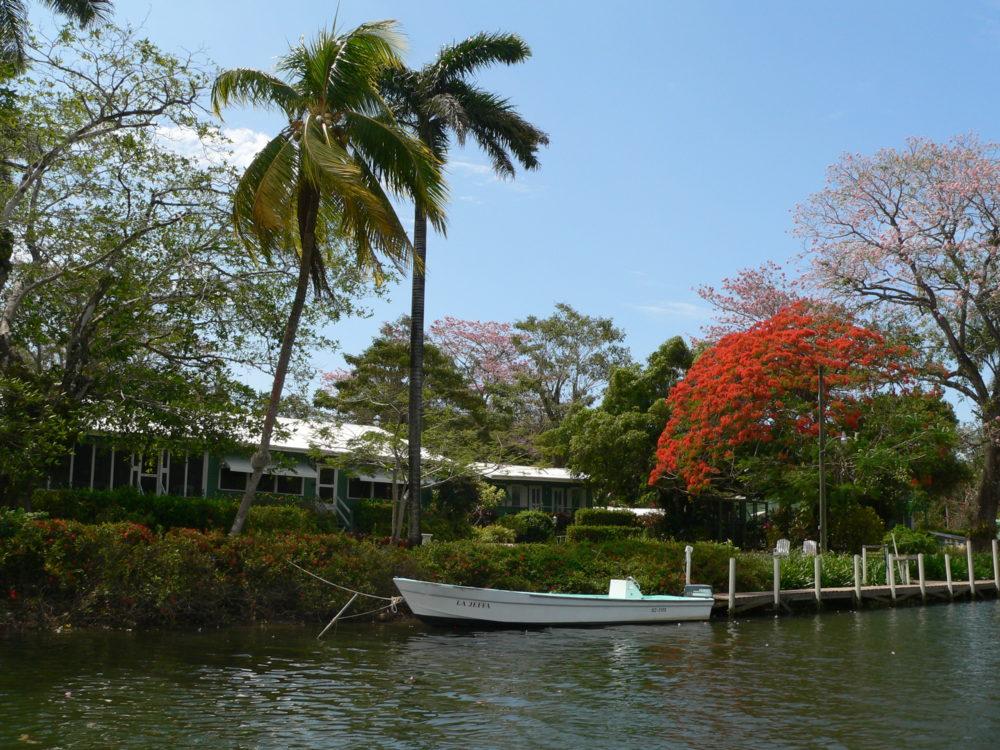 Belize River Lodge, Long Caye Outpost, Belize, Aardvark McLeod