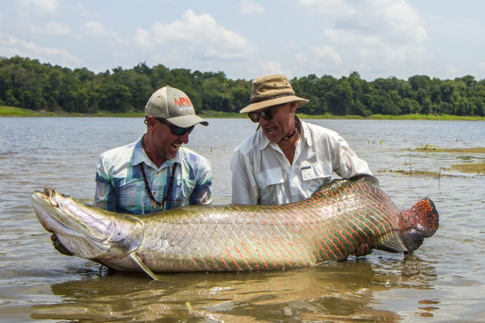 Pirarucu Lodge, Arapaima, Amazon, Brazil fishing