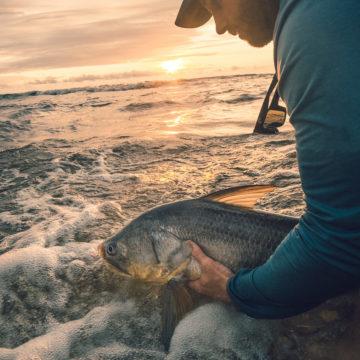 Sette Cama, Gabon, Pete Gibson, Tourette Fishing, Aardvark McLeod
