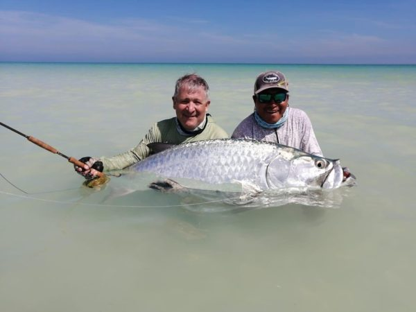 Isla Holbox, Mexico, Tarpon