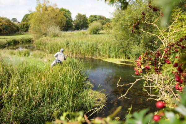 River Anton, Hampshire, Chalkstream, Aardvark McLeod