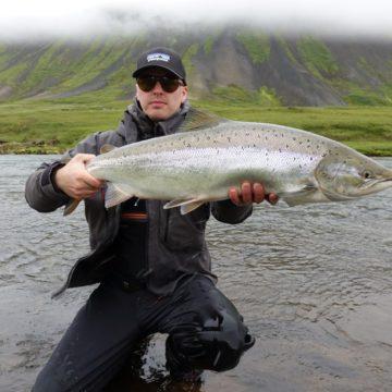 Svarlbardsa. Iceland, Aardvark McLeod