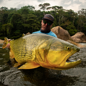 Tsimane Golden Dorado Pacu Jungle