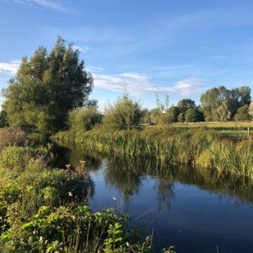 Westfair Beat, Mayfly, chalkstream, river test, river anton, river avon,