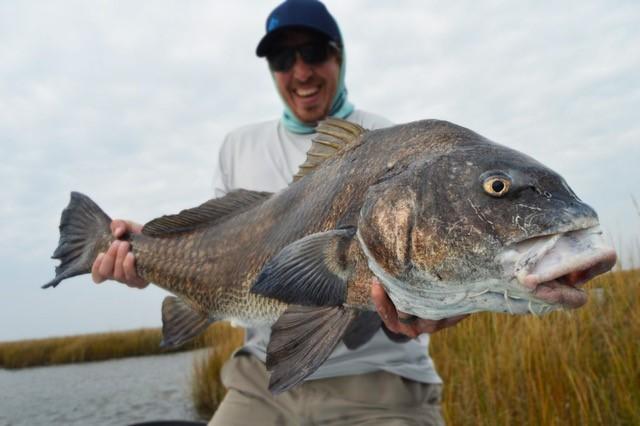 Outpost Mothership, Redfish, Louisiana, Aardvark McLeod