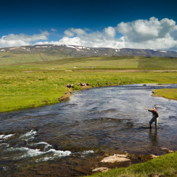 Salmon fishing, Laxa I Asum, Iceland