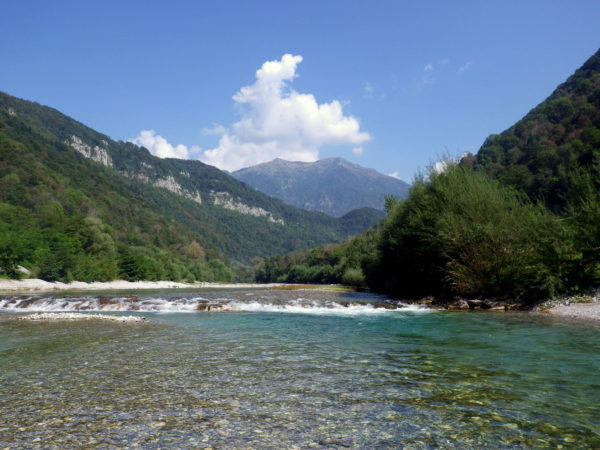 Slovenia, trout, grayling