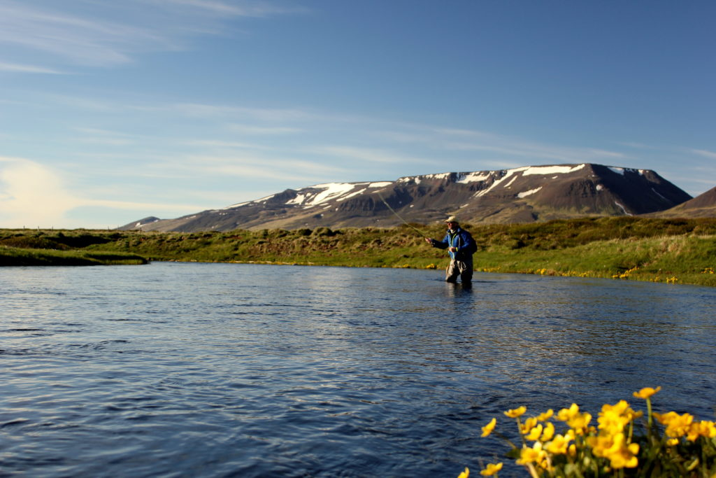 Iceland Trout Fly Fishing, Dry Fly Fishing Iceland