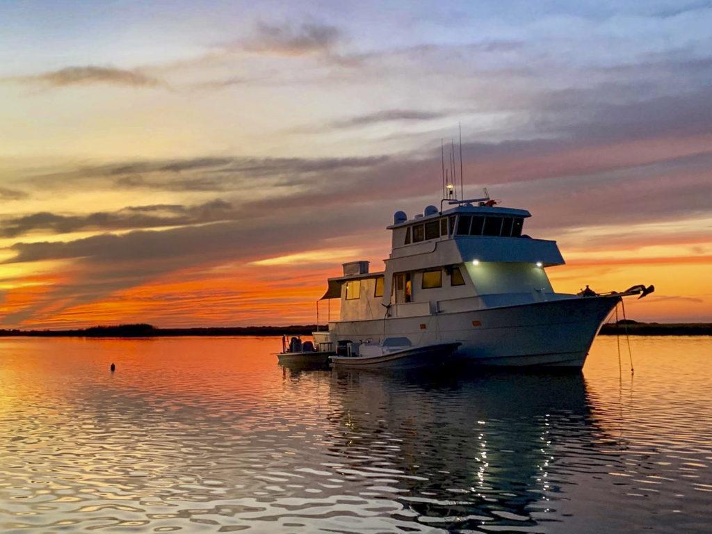 Outpost Mothership, Louisiana Redfish, Aardvark McLeod