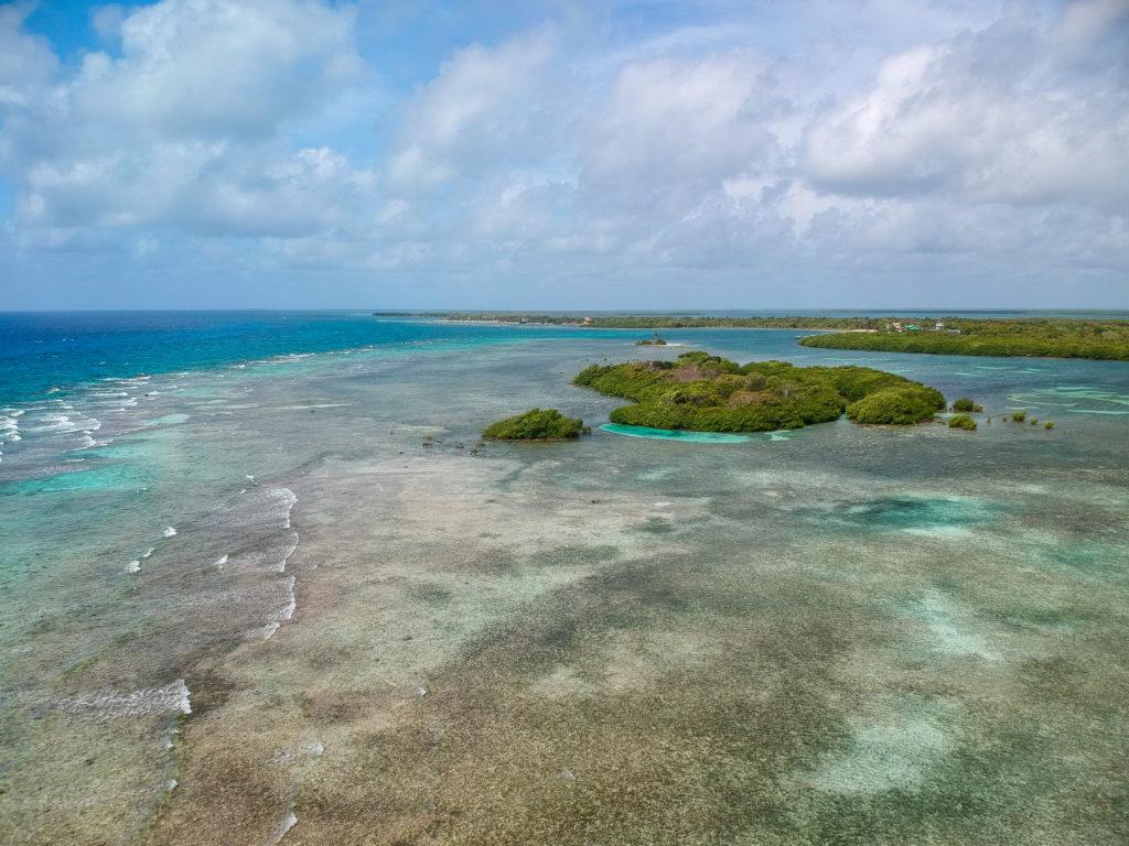 Turneffe Flats Lodge, Turneffe Atoll, Belize, Aardvark McLeod
