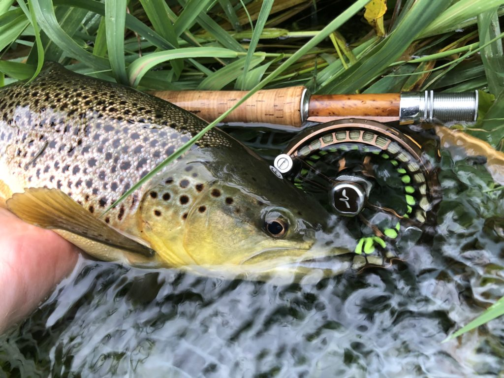 River Itchen Chalkstream fly fishing, Dry Fly Fishing, Alex Jardine, Aardvark McLeod Dry Fly Fishing