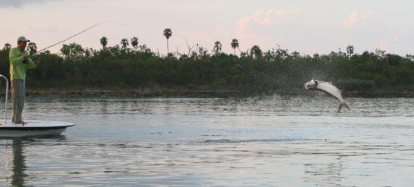 Jardines Avalon 1, Cayo Largo, Fly fishing Cuba, Avalon, Aardvark McLeod