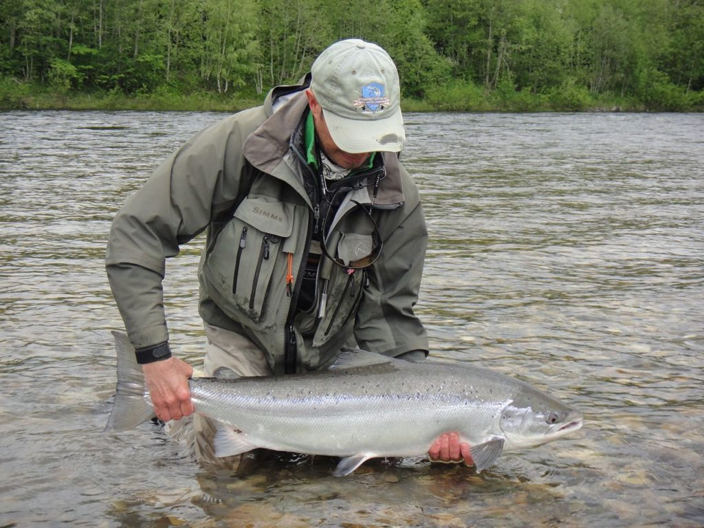 Gaula River, Norwegian Flyfishers Club, NFC, Norway, Atlantic salmon