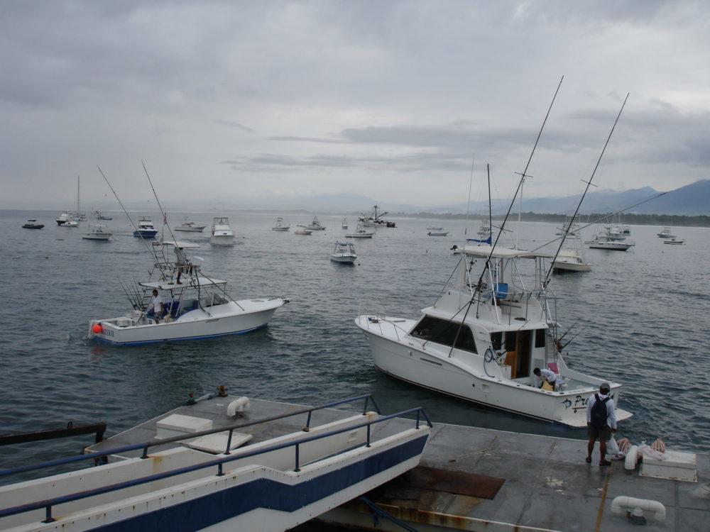 Costa Rica, Aardvark McLeod, Costa Rica fishing, sailfish Costa Rica