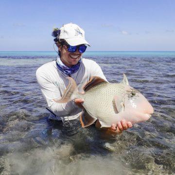 Alphonse Island, Triggerfish, Seychelles, Aardvark McLeod