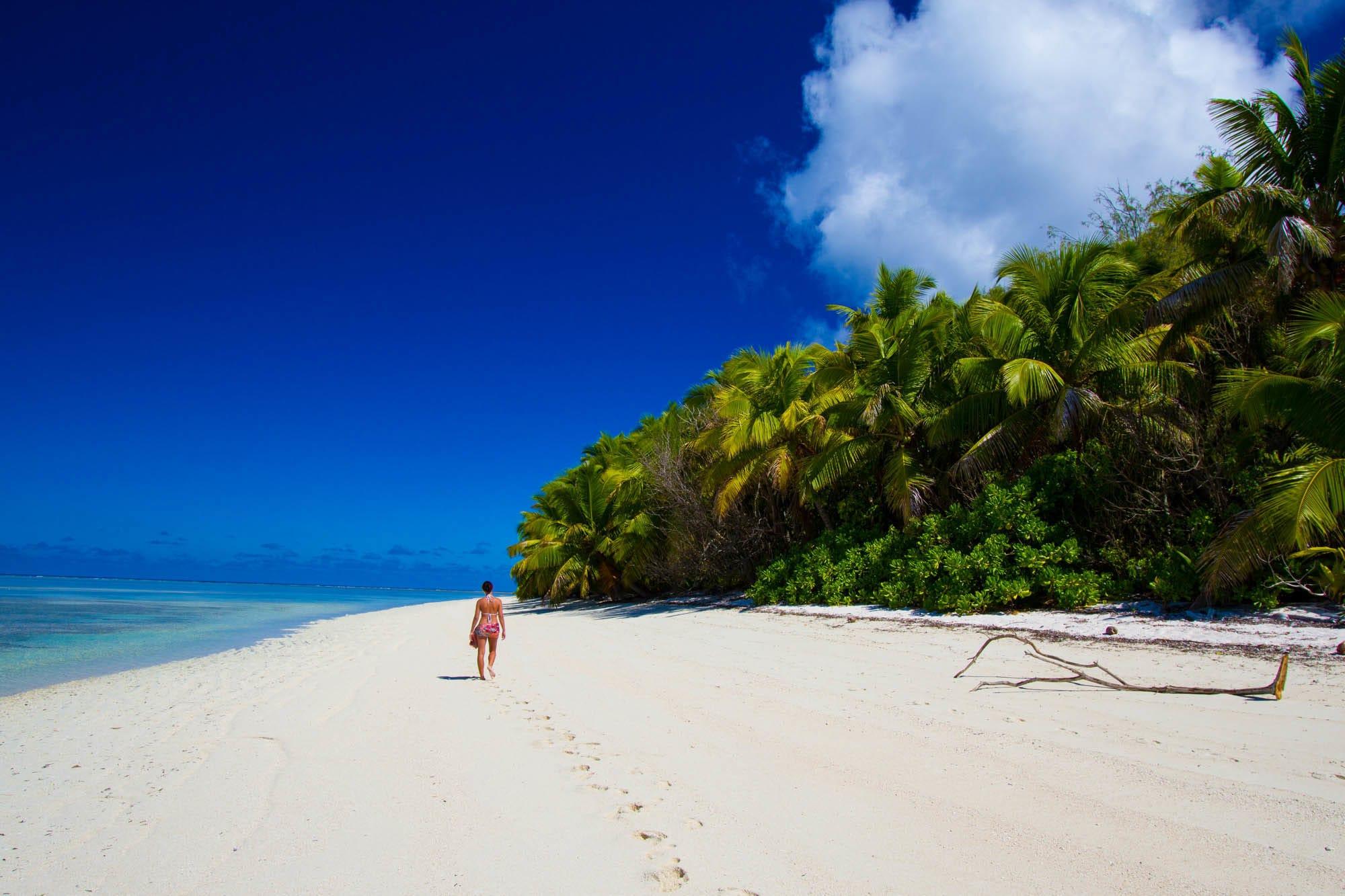 Alphonse Island Seychelles Aardvark McLeod family fishing holiday