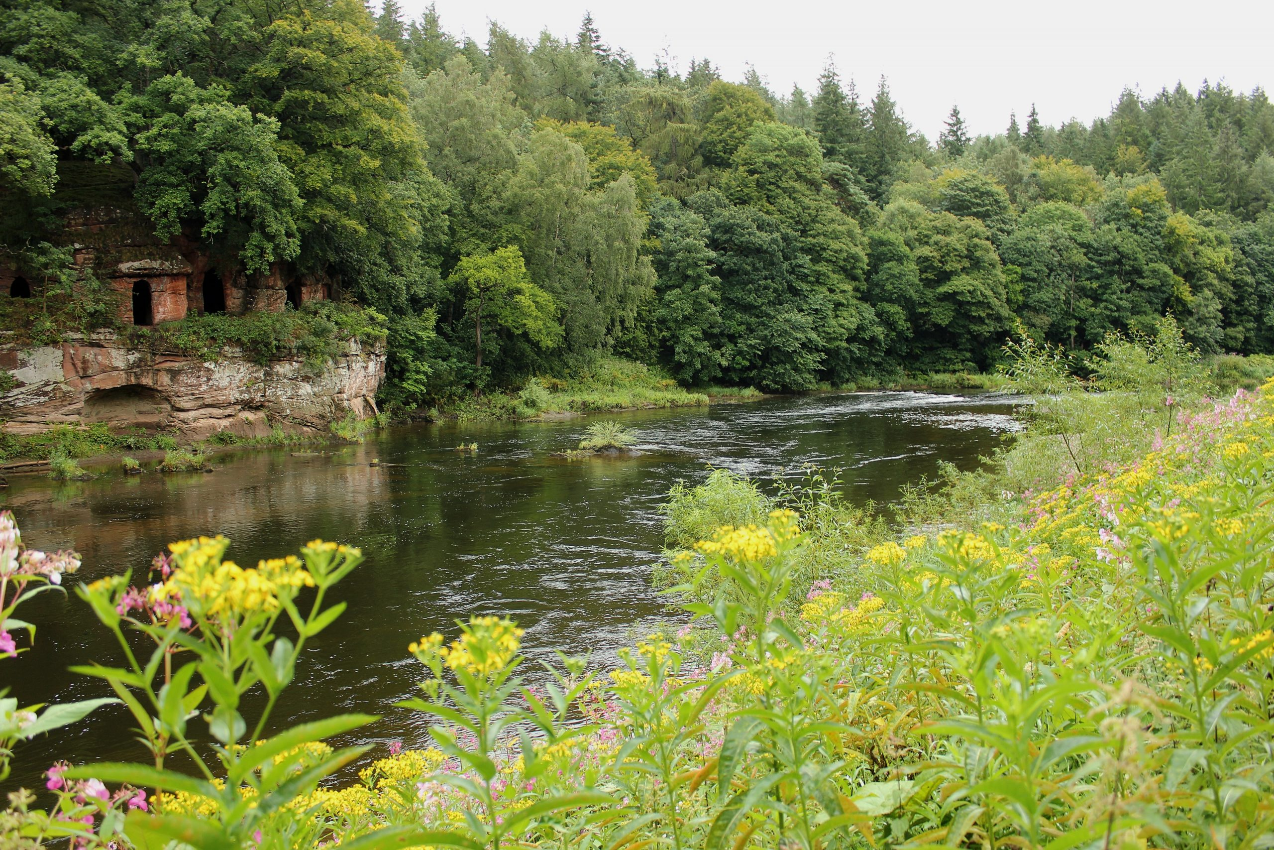 River Eden Cumbria Fly Fishing, Tufton Arms Cumbria, Cumbria Salmon Fly Fishing, Cumbria Trout Fly fishing