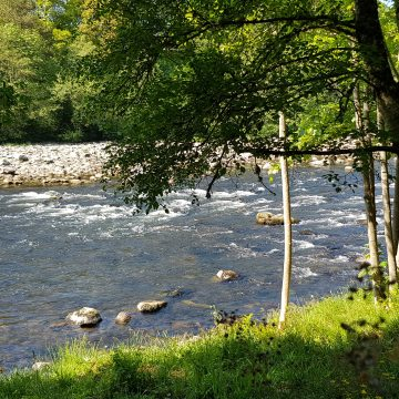 Salmon fishing, River Dee, Lower Blackhall, Inchemarlo, Aardvark McLeod