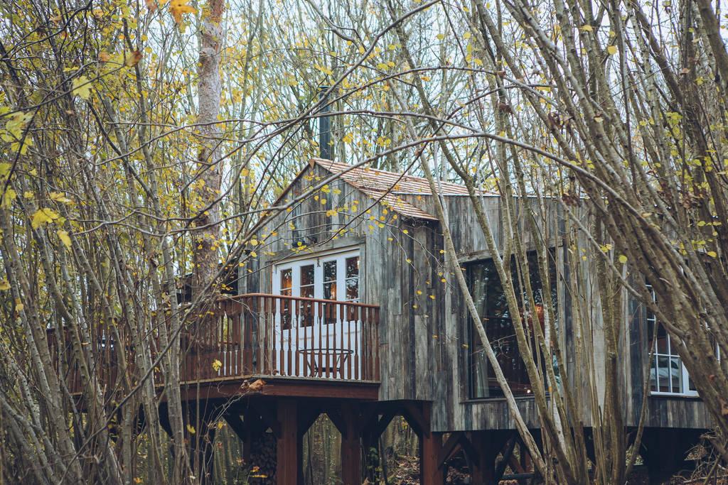 Wild Escapes, River Test, Aardvark McLeod