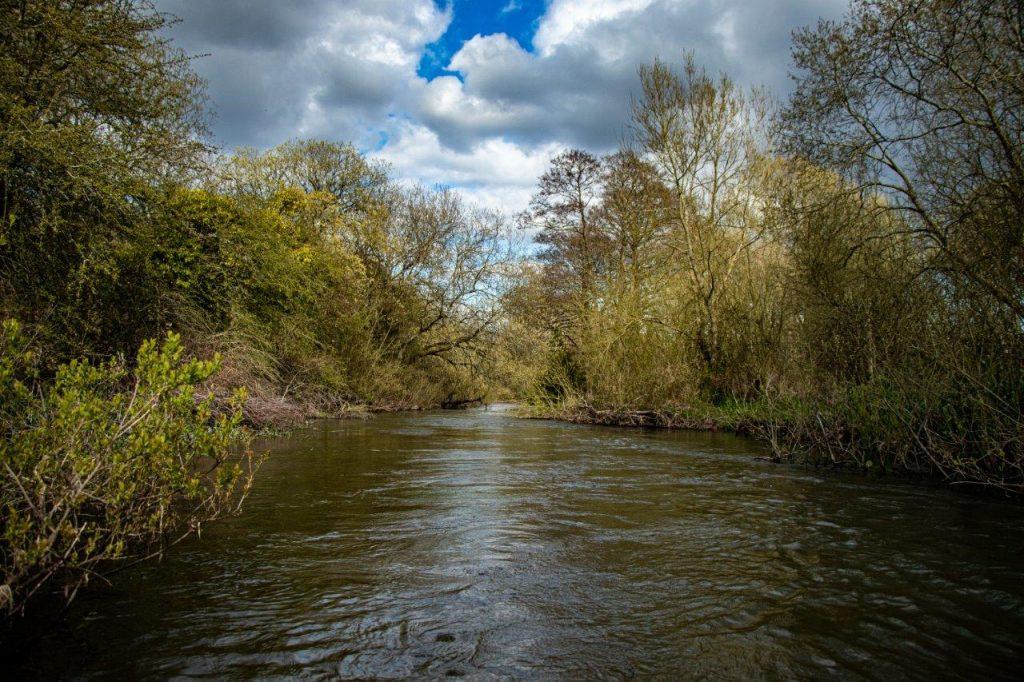 River Wylye at Langford Lakes, Chalkstream Fly Fishing, Aardvark McLeod