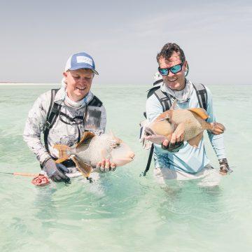 Sudan, trigger fish, Aardvark McLeod