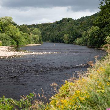 River Tyne, Aardvark McLeod, Olly Thompson